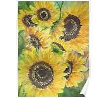 Sunflowers Dance Poster