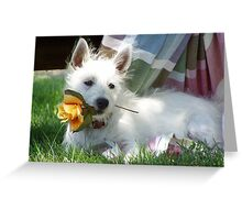 A special rose just for you! Greeting Card