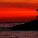 #1113  Sunset In Santa Cruz by MyInnereyeMike