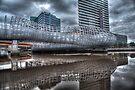 Funky Webb Bridge by Shari Mattox