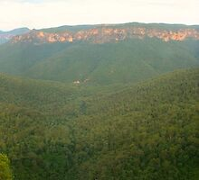Grose Valley panorama from Govett's Leap by Michael Matthews