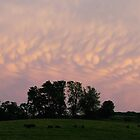 Mammatus Clouds #6432 by Lisa Diamond