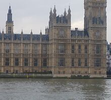 The palace of Westminster and Thames River by Fathers