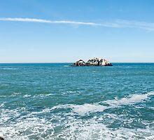 Pacific Coast by Jacob Pelz