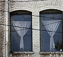 Twin Windows by CarolM