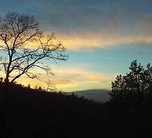 Sunset Silhouette In The San Bernardino Mountains by Bearie23