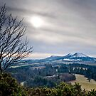 Scott&#x27;s View, The Eildons, Scottish Borders by Iain MacLean