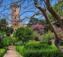 Morocco. Rabat. Kasbah Des Oudaias. Andalusian Gardens. by vadim19