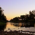 Macquarie River  by Cassandra Purkiss