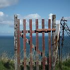 Gate overlooking the Sea by LydiaBlonde