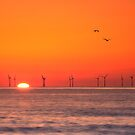Setting Sun by Chris Miles