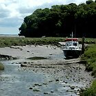 From Laugharne, with Love.  by Sally Kitten