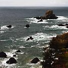 The Oregon Coast by Jennifer Hulbert-Hortman