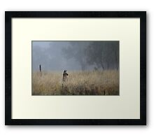 Kangaroo's in the Mist Framed Print