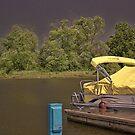 Suncatcher in the Storm by Sandra Lee Woods