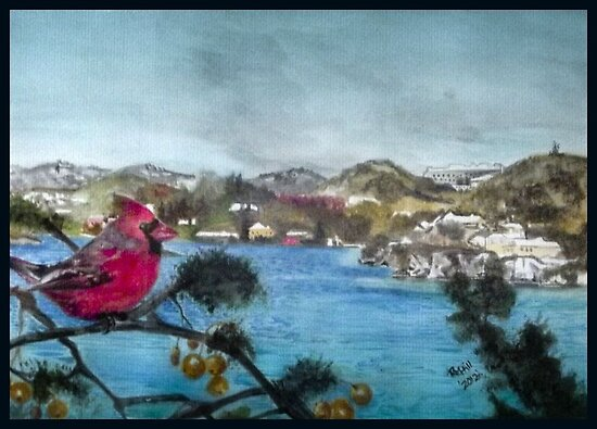 Red cardinal,Bermuda by buddybetsy