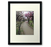 Osaka Blossoms Framed Print