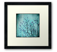 pink berries Framed Print