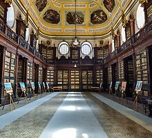 Visiting an old library  by Andrea Rapisarda