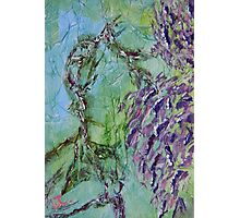 Purple Wisteria Abstract 2  Photographic Print