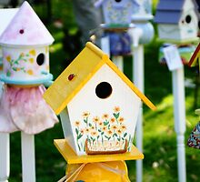 Bright Colored Birdhouses by vvfineartphotog