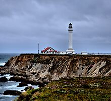 Point Arena Lighthouse by Bob Wall