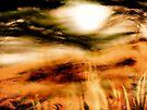sun through the mist by banrai