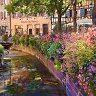 Summer in Colmar, Alsace, France by Maria Draper