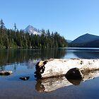 Lost Lake by LadyEloise