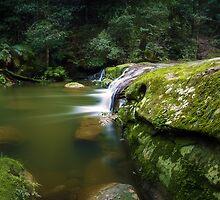 Bush Rock Garden by Mark  Lucey
