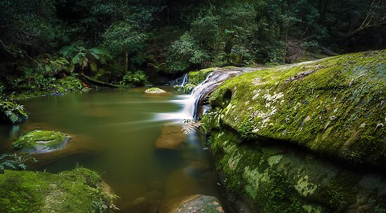 Bush Rock Garden by Mark  Lucey