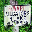 Beware Sign Against Alligators by Cynthia48