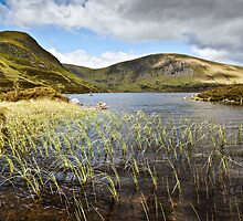 Loch Skeen by David Lewins