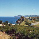 Awana, Great Barrier Island.........! by Roy  Massicks