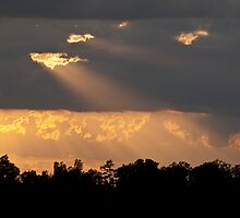 The Light at the End of the Day.  by barnsis