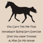 Horse & Exercise T-Shirts and Hoodies by Patricia Barmatz