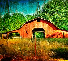 Along the Road by Cynthia Broomfield