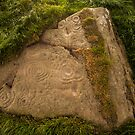 Townhead Rock Carvings by Brian Kerr