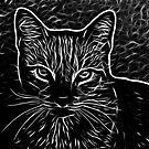 Black and White Fractalius Cat  by Beatriz  Cruz