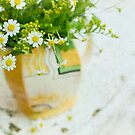 .daisy jug. by Emma Collins