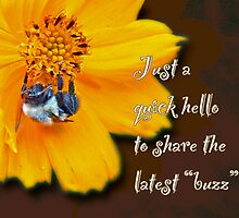Hello Greeting Card - Cosmos and Bee by MotherNature