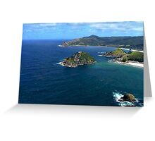 Great Barrier Island from the air........! Greeting Card