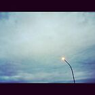 Street Light (b) by cudatron