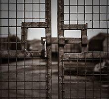 No Entry by Colin Hayward