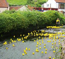 The Duck Race, Cheddar, Somerset, UK by buttonpresser