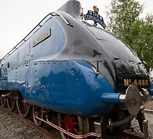 Number 4468 Mallard by Keith Larby