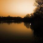 A beautiful sunset by WesleyB