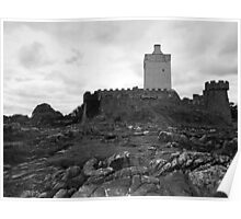 Doe Castle Poster