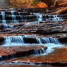 Water Cascade North Creek Utah by Bob Christopher