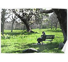 Spring in the Park Poster